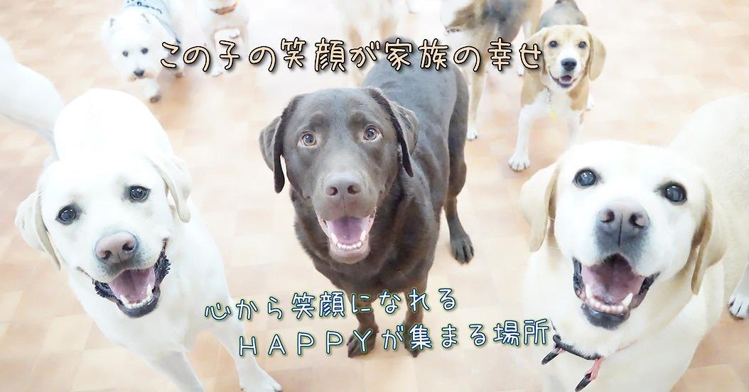この子の笑顔が家族の幸せ