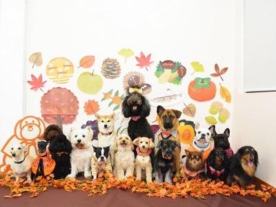 2015年 「秋」のサムネイル