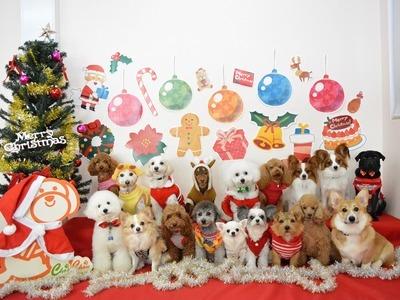 2014年 「クリスマス」のサムネイル
