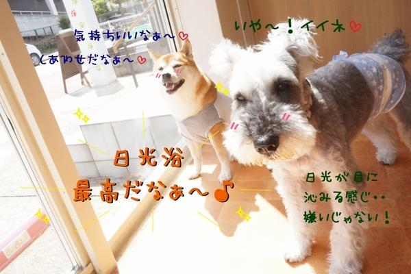 父の日は、快晴なり~(^_-)-☆