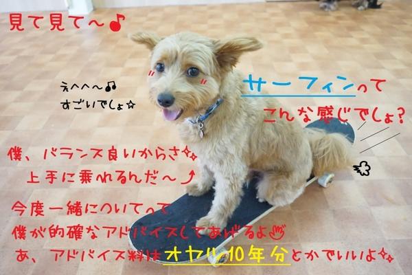 4連休最終日~((((oノ´3`)ノ