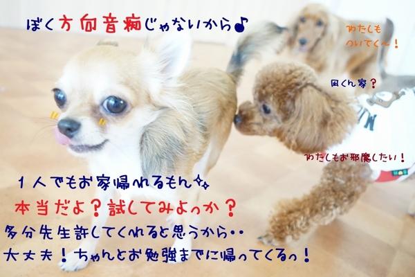 人と一緒に楽しくお勉強を\(^o^)/