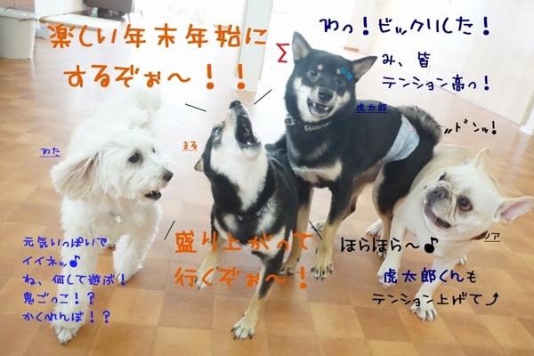 楽しい年末の始まり始まり~(*´罒`*)