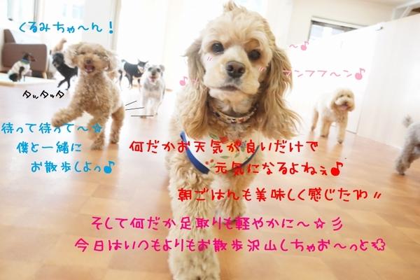 何でもない日が幸せ(*´ω`*)