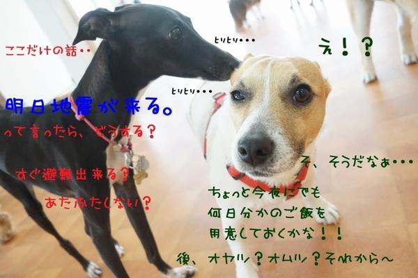 災害訓練Weekの始まり!(^^)!
