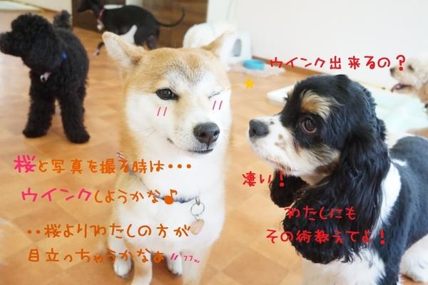 3月も良い締めくくりに!(^^)!