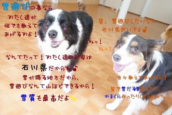 お天気に恵まれたホワイトデー(^^♪