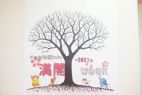 シュシュに桜の木が登場だぁ~( ✧Д✧)