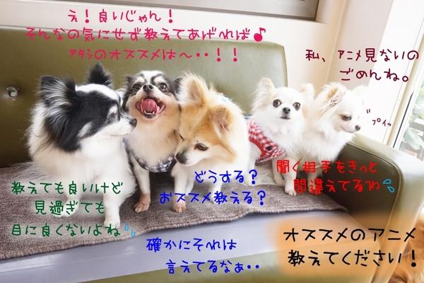 5月に突入だー!!!