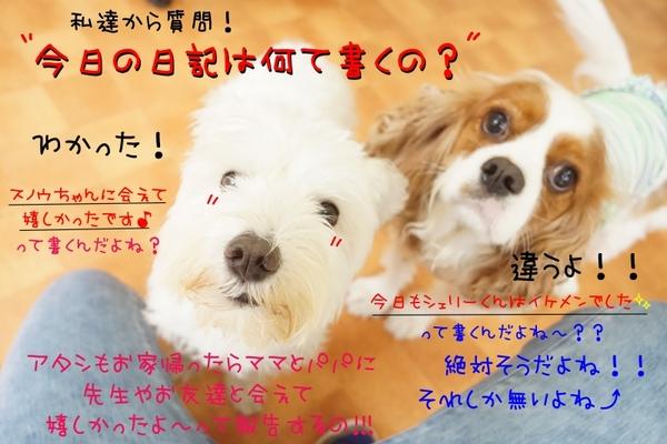 毎日が記念日(^^)/