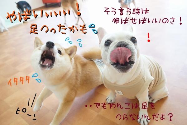 今日も皆で体幹トレーニング!!