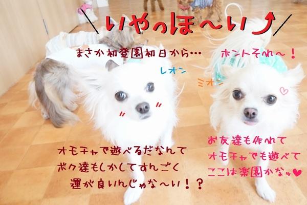 オモチャとの運命的な出会い!?(^^)/