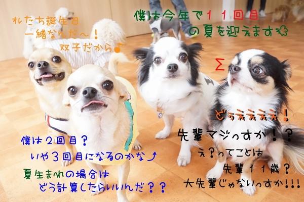 熱い夏にしよう~(^_-)-☆