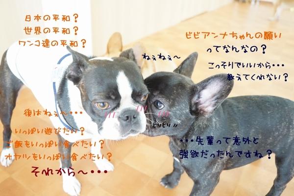 年に一度の・・・七夕Week(^_-)-☆