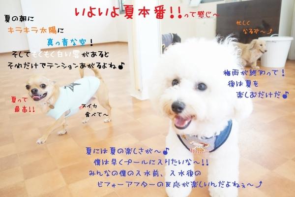 夏休みに入る前に測定しちゃおう(^^)/