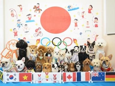 2021 「オリンピック」のサムネイル