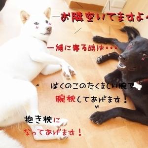災害訓練Week4日目(^_-)-☆