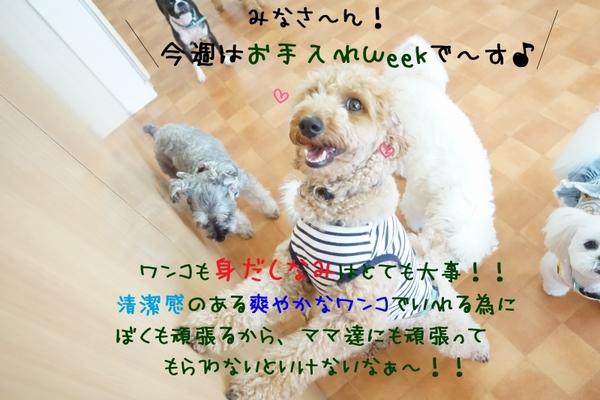 継続は力なり!(^^)!
